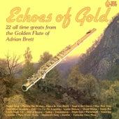Echoes of Gold von Adrian Brett