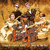 Fabulous Tab Tropical Acoustic Band: Next To The Fire de Evandro Mesquita