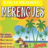 Los 14 Mejores Merengues de Various Artists