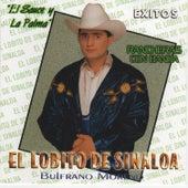 Exitos by El Lobito De Sinaloa