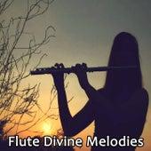 Flute Divine Melodies by Krishna