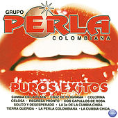 Puros Exitos by Grupo Perla Colombiana