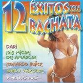 12 Éxitos de la Bachata by Various Artists