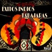 Éxitos Indios Tabajaras, Vol. 1 by Los Indios Tabajaras