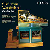 Claviorgan Wonderland by Claudio Brizi