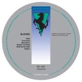 Backwards Light EP de Slackk
