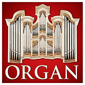 Organ (Red Classics) by Various Artists