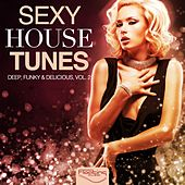 Sexy House Tunes - Deep, Funky & Delicious, Vol. 2 de Various Artists
