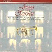 Joyas de la Música Vol. 2 by Various Artists