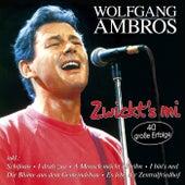 Zwickt's mi  - 40 große Erfolge von Wolfgang Ambros
