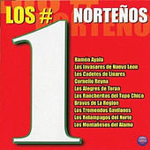 Los #1 Nortenos by Various Artists