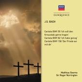 Bach: Cantatas de Roger Norrington