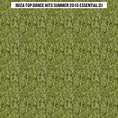 Ibiza Top Dance Hits Summer 2015 Essential DJ (Top 50 Songs Dance Hit Parade) by Various Artists