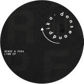 Lynn EP by Dense and Pika