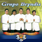45 Éxitos by Grupo Bryndis