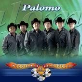 45 Éxitos van Palomo