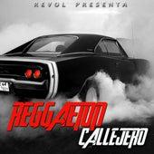 Reggaeton Callejero Vol. 1 by Various Artists