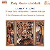 Lamentations von Various Artists
