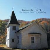 Gardens In The Sky: The Bluegrass Gospel of James King de James King