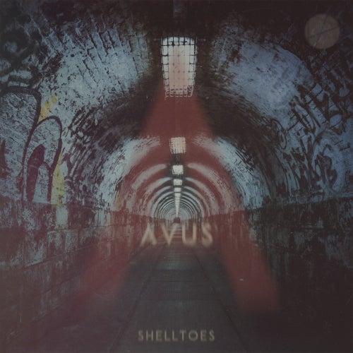 Shelltoes - Single by Avus