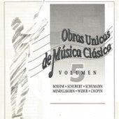 Obras Unicas de Música Clásica Vol. 5 by Various Artists