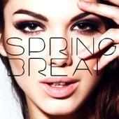 Spring Break 2015 by Various Artists