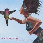 Can't Force a Fire de B Forrest