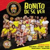 Ilê Aiyê Bonito De Se Ver - Ao Vivo (Live) de Ile Aiye