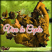Viva la Copla, Vol. 1 von Various Artists