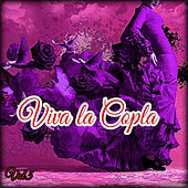 Viva la Copla, Vol. 5 von Various Artists