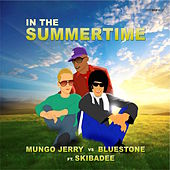 In The Summertime by BlueStone