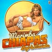Llego la Marimba by Marimba Chiapas