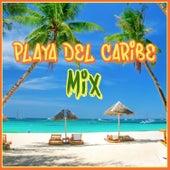 Playa del Caribe Mix de Various Artists