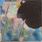 World Soul by Vinyl Williams