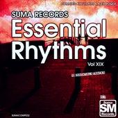 Suma Records Essential Rhythms, Vol. 19 by Various Artists