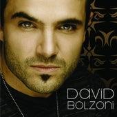 David Bolzoni de David Bolzoni