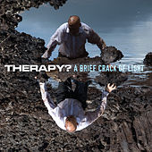 A Brief Crack Of Light von Therapy?