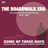 Some of These Days (The Sound of the Prohibition Era, 1919-1933) by Various Artists