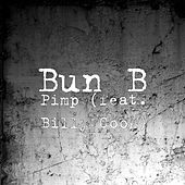 Pimp (feat. Billy Cook) by Bun B