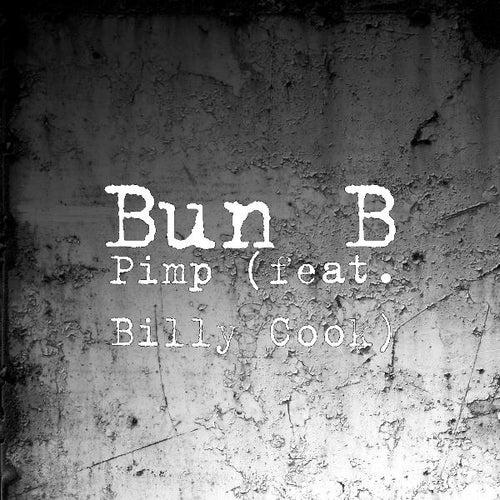 Pimp (feat. Billy Cook) by Bun B