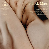 Dumb Flesh by Blanck Mass