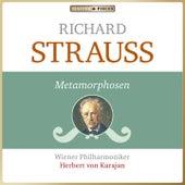 Masterpieces Presents Richard Strauss: Metamorphosen von Wiener Philharmoniker