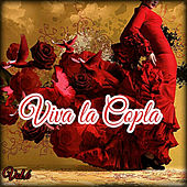Viva la Copla, Vol. 6 von Various Artists