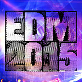 EDM 2015 - Electronic Dance Music de Various Artists