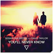 You'll Never Know (feat. David Taylor) by Sebastian Bronk