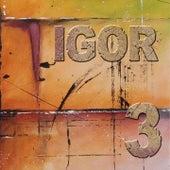 3 de IGOR