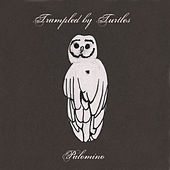 Palomino de Trampled by Turtles