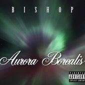 Aurora Borealis by Bishop