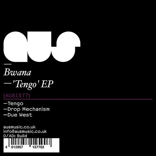 Tengo by Bwana