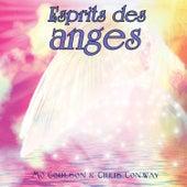 Esprit des anges de Chris Conway